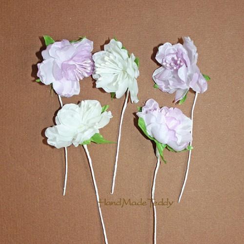 Цветок хризантемы королевской